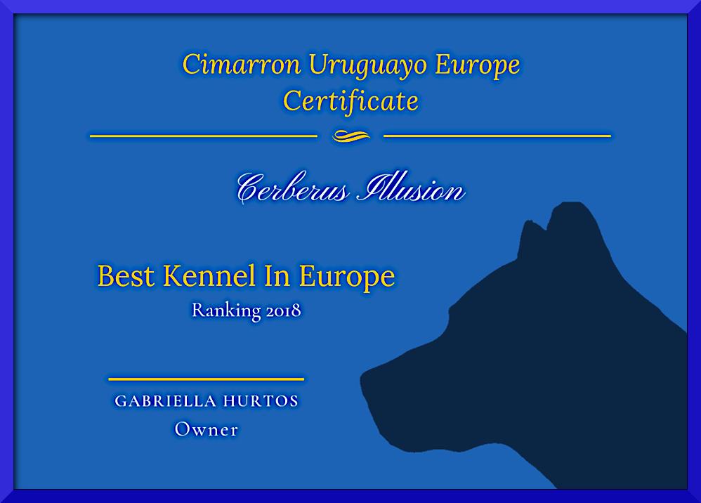 Cerberus Illusion - Best Cimarron Uruguayo Kennel In Europe