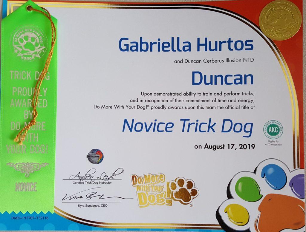 Duncan Cerberus Illusion NTD Novice Trick Dog Trikovy pes Trükk kutya
